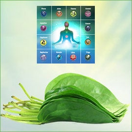 Betel Leaf Astrology