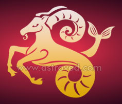 Characterisitcs and Personality of Capricorn