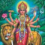 Nava Durga Homa1