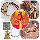 Diwali Ultimate Abundance Elite Plus Package