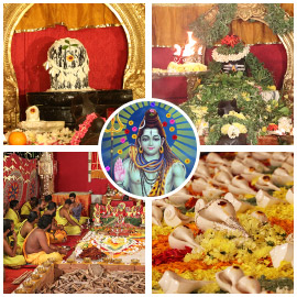 Essential Maha Shivaratri Package 2019