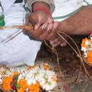 Individual Maha Tarpanam on Mahalaya 1st Moon
