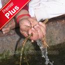 Premier Plus Rituals for Mahalaya Paksha