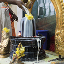 11 Sacred Offerings for Abishekam (Hydration Ceremony) during 4 Kalas (12 Hour Powertime)
