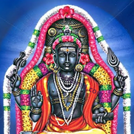 Individual Dakshinamurthy Homa