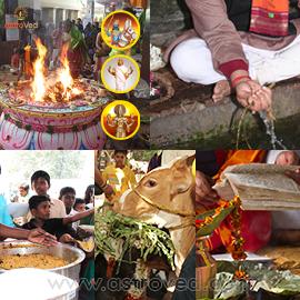 Aadi Amavasya Elite Ancestral Poojas