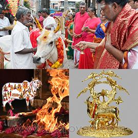Elite Gho Pooja Rituals