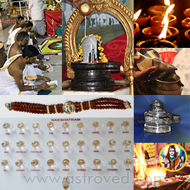 Elite Rituals for Maha Shivaratri