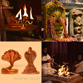 Elite Naga Chaturthi and Panchami Rituals