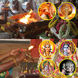 Elite Rituals for Panguni Uthiram