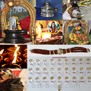 Maha Shivaratri: Elite Plus Rituals For Maha Shivaratri