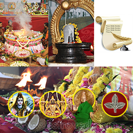Elite Rituals for Pradosham