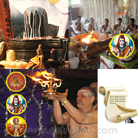 Elite Rituals for Sun Pradosham