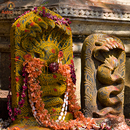 Essential Naga Chaturthi and Panchami Package