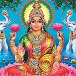 Individual Brzee Homa Package on Anuradha Star Day