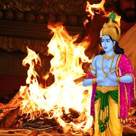 Individual Krishna Homa