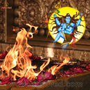Individual Rudra Homa and Bilwa Archana to Lord Sh