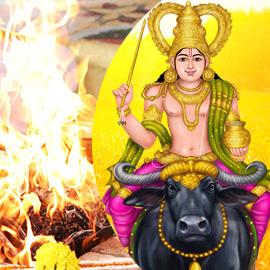 Individual Vishnumaya Homa