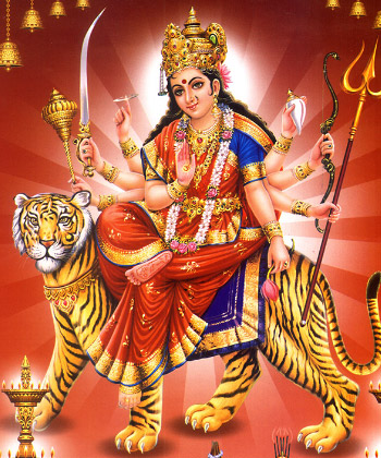 Shoolini Durga Homa