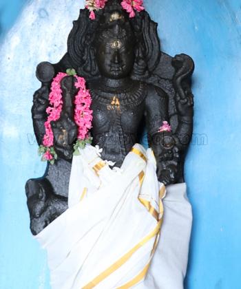 8 Priest Individual Ashta Bhairava Homa (Fire Lab to Invoke 8 Forms of Bhairava)