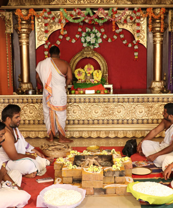 10 Priest Individual Dashavatar Homa (Fire Lab to Invoke the Unique Blessings of Vishnu 10 Incarnations)