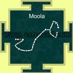 Moola Nakshatra Fire Lab(Homa)