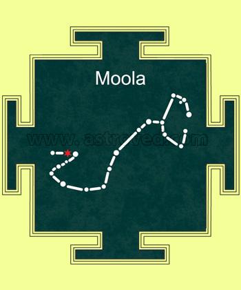 Moola Nakshatra Homa
