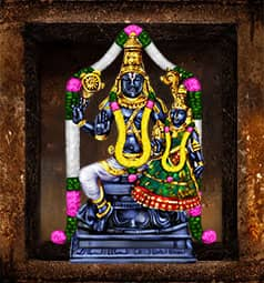 AstroVed Lakshmi Narayana Temple