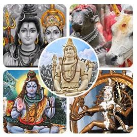 Maha Shivaratri All-Inclusive Package