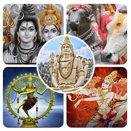 Maha Shivaratri Enhanced Package
