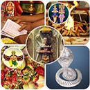 Naga Chaturthi and Panchami Advanced Plus Package