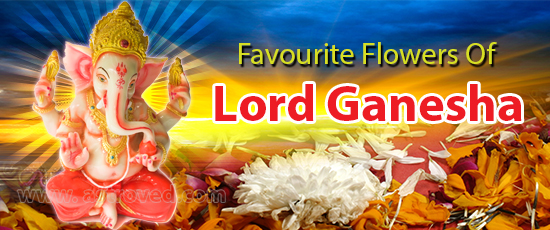 favourite-flower-lord-ganesha