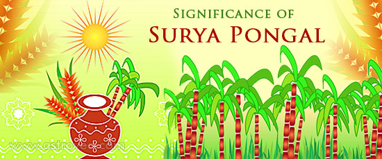 significance-of-surya-pongal
