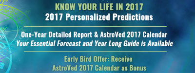 2017 Personalized Predictions Report
