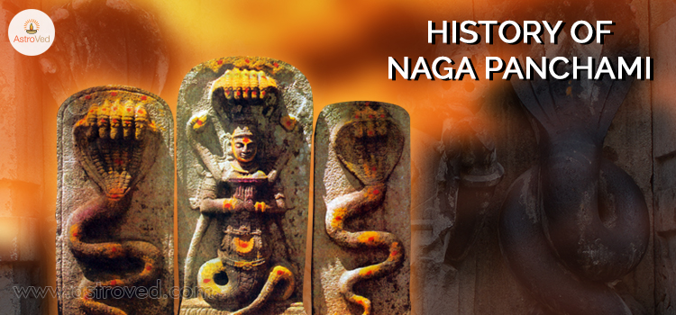 history-of-naga-panchami