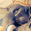 fascinating-facts-about-ganesha-chaturthi-small