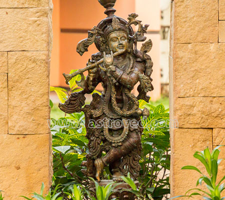 Krishna Homa
