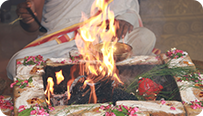 Individual Homa for Mars and Venus