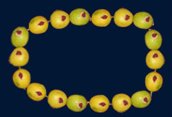 Lemon-mala