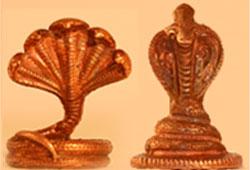 48-Day Naga Pooja