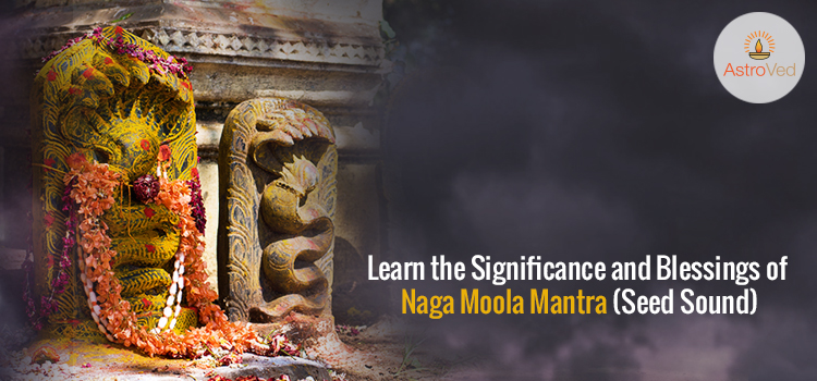 Learn the Significance and Blessings of Naga Moola Mantra (Seed Sound)