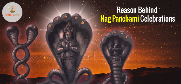 reason-behind-nag-panchami-celebrations
