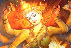 Nava Chandi Homa