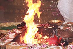 Subramanya Moola Mantra Homa