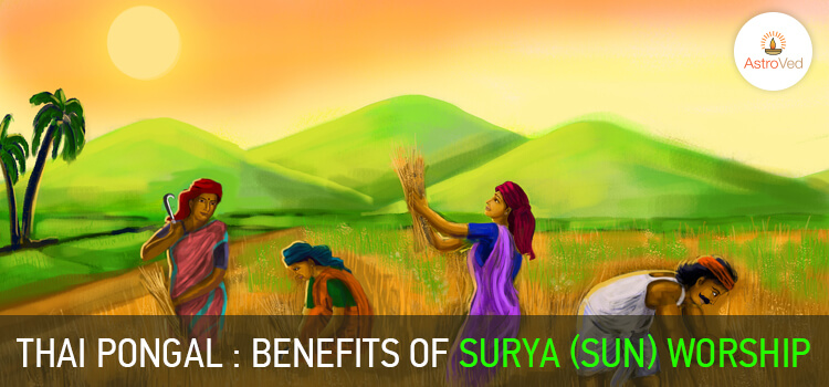 Thai Pongal: Benefits of Surya (Sun) Worship