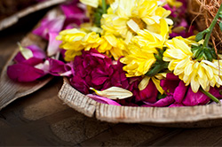 2 Kerala Style Pushpanjali (Flower Offering)