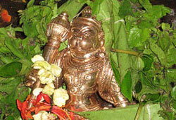 Offering Betel Leaf Garland to Hanuman at 5 Vortices