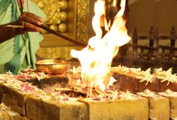 5-Priest Hanuman Chalisa