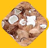 Deha Muttu (Kerala-style coconut breaking ritual)