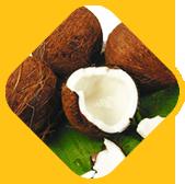 Sarva Aishwarya Muttu (Kerala-style coconut breaking ritual